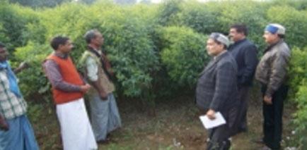 amari palan by akbar